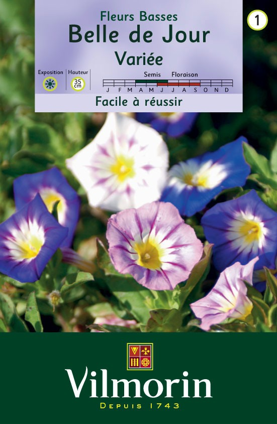 Thompson /& MORGAN-fleurs-Coquelicot orientale brillante 180 Semences